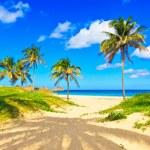 Varadero beach in Cuba — Stock Photo