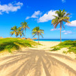 Varadero beach in Cuba — Stock Photo #8479659