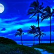 Romantic tropical beach at night with a full moon — Stock Photo