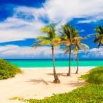 The worlwide famous beach of Varadero in Cuba — Stock Photo