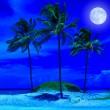Beautiful beach at night with a bright full moon - Stock Photo