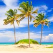 The worlwide famous beach of Varadero in Cuba — Stock Photo #8481208