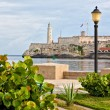 Park in Havanwith iconic El Morro castle in background — Stock Photo #8481269