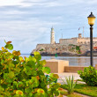 Stock Photo: Park in Havanwith iconic El Morro castle in background