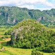The Valley of Vinales in Cuba, a famous touristic destination — Stock Photo #8481612