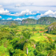 The Valley of Vinales in Cuba, a famous touristic destination — Stock Photo #8481625