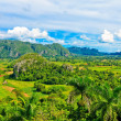 The Valley of Vinales in Cuba, a famous touristic destination — Stock Photo #8481626
