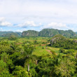 The Valley of Vinales in Cuba, a famous touristic destination — Stock Photo #8481633