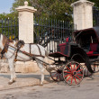 Horse carriage waiting for tourists in Old Havana — Stock Photo #8482394