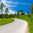Lonely road on a beautiful summer day — Foto Stock