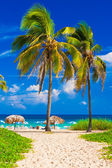 The beach in Cuba — Stock Photo