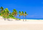 The worlwide famous beach of Varadero in Cuba — Stock Photo