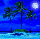 Beautiful beach at night with a bright full moon — Stock Photo