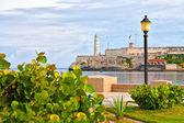 Park in Havana with the iconic El Morro castle in the background — Stock Photo