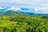 η κοιλάδα του vinales, στην κούβα, ένα διάσημο τουριστικό προορισμό — Φωτογραφία Αρχείου