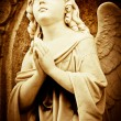 Praying angel — Stock Photo #8504539