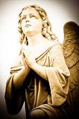 Praying angel — Stock Photo