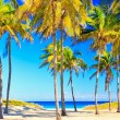 The famous beach of Varadero in Cuba - Stock Photo
