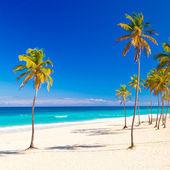 The beautiful cuban beach of Varadero — Stock Photo