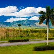 Road near the mountains of Pinar del Rio in Cuba — Stock Photo