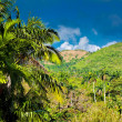Mountains  in the province of Pinar del Rio in Cuba — Stock Photo