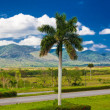 The cuban countryside — Stock Photo