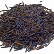 Wild rice — Stock Photo #8285779