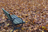 Autumn Bench — Photo
