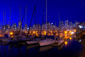 Marina di false creek — Foto Stock
