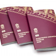 Stock Photo: Swedish passport