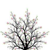 Spring Blossom Tree — Stock Vector