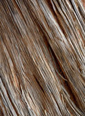Old Weathered Wood — Stock Photo