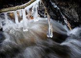 Icicles over Frozen Stream — Photo