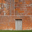 Stock Photo: Brickwall study