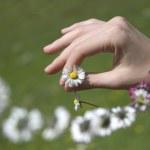 Holding a daisy chain — Stock Photo