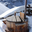 Hot tub — Photo #8186920