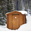 Wilderness Outside Toilet — Stock Photo
