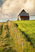 Rural Farmland — Stock Photo