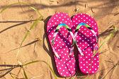 Pink Flip Flops — Stock Photo