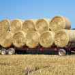 Stock Photo: Hay Wagon