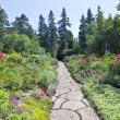 Stock Photo: Perennial Garden