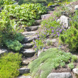 Stock Photo: Rock Garden Stairs