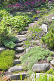 Rock Garden Stairs — Stock Photo