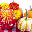 Autumn Display — Stock Photo