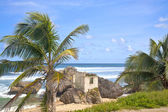 Bathsheba — Stock Photo