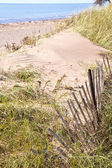Old Beach Fence — Stockfoto