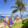 Постер, плакат: Bathsheba Beach Towels Barbados