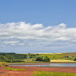 Stock Photo: Prince Edward Island Pastoral Landscape