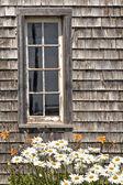 Rustic Barn Window — Stock Photo