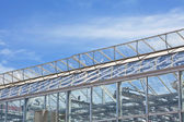 Glass Greenhouses — Stock Photo